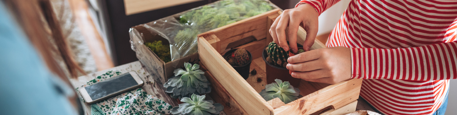 Two women building a terrarium with succulents and cacti.